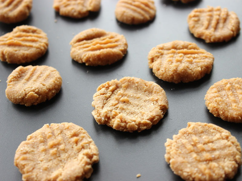 Isopure - Recipes - Peanut Butter Protein Cookies